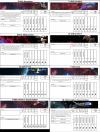 fighter-sheets - 10-24-2021.png