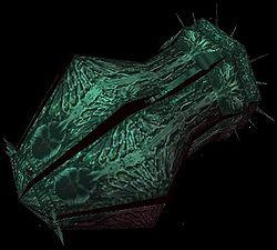 Profile-kraken.jpg