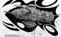 Sketch-orca.png